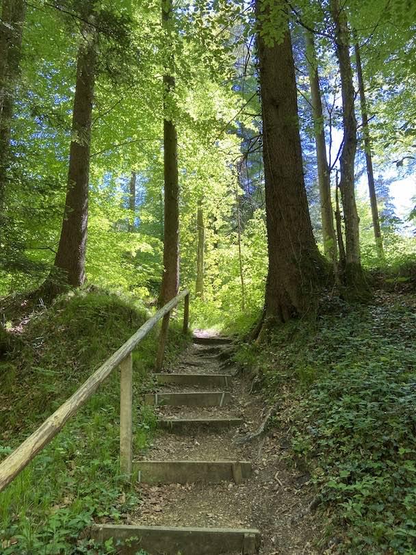 Waldbaden Retreat im grünen Kloster von Plankstetten